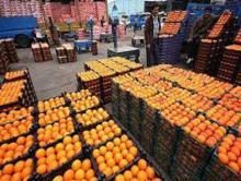 سلامت بهداشتی 140 تن نارنگی توقیفی تایید نشده /سرنوشت این محصول پاکستانی در انتظار روز های آتی