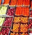 390 هزار تن انواع محصولات كشاورزي در همدان خريداري شده است